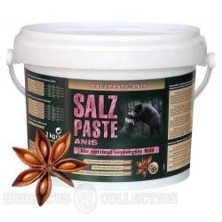 Pasta solna anyżowa