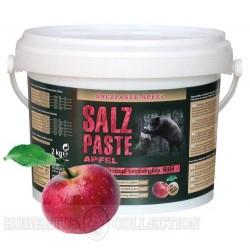 Pasta solna jabłkowa